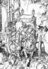Una carroza tirada por dos caballos…/2